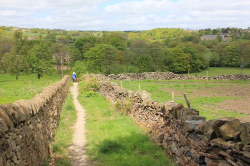 Following the Hand=made Drystone Walls