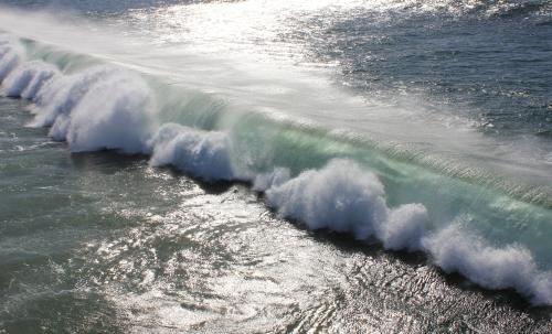 img_4451-surf1